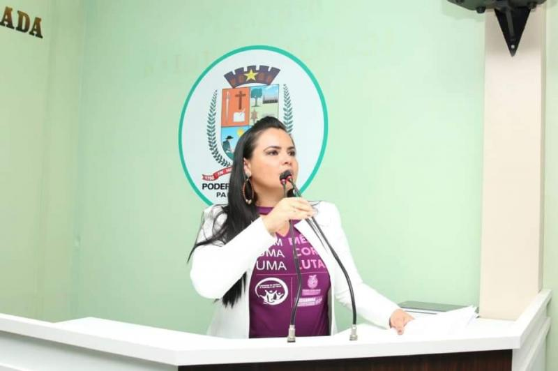 Em sessão plenária, vereadora Vanessa homenageia jornalista Tadeu de Souza