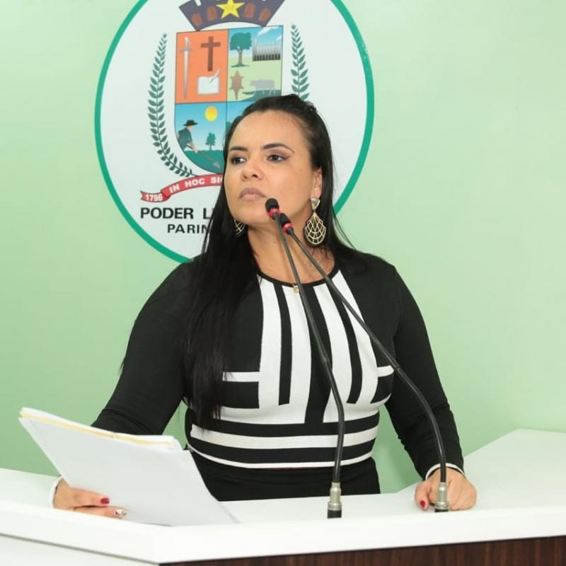 Vanessa Gonçalves propõe Audiência Pública para cobrar melhoria no fornecimento de energia no Baixo Amazonas