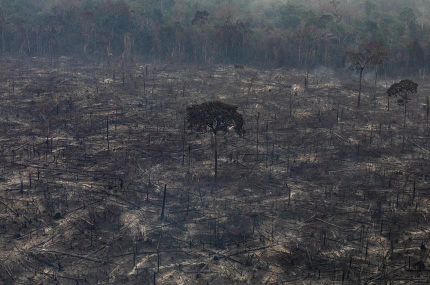 Sessão temática recebe ministros para debater situação da Amazônia