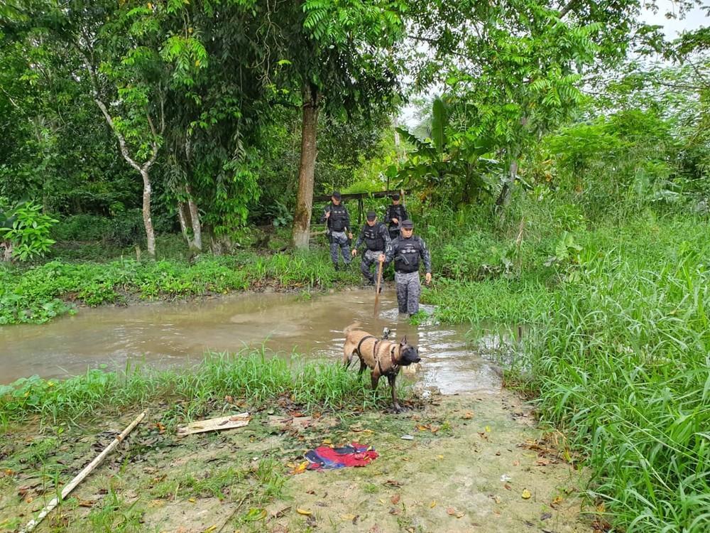 Polícia busca em área de mata menino de 2 anos que sumiu do pátio de casa em Manaus