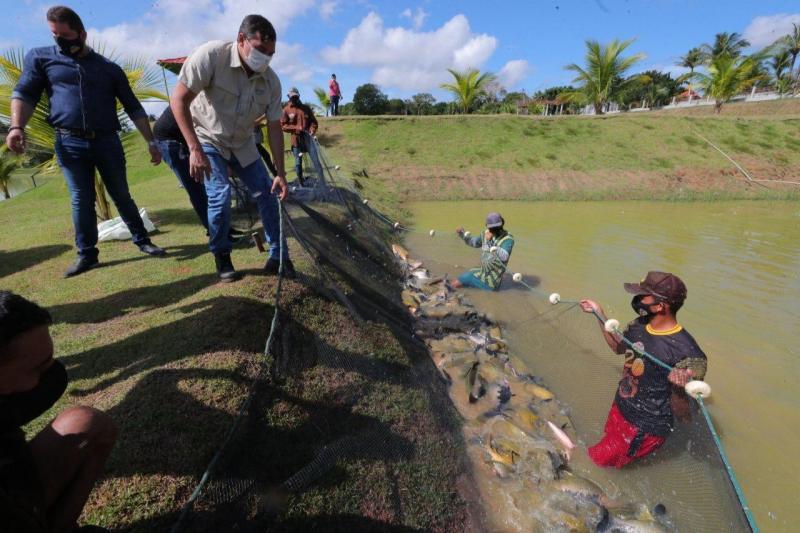 Wilson Lima lança edital para a piscicultura e entrega fomentos ao setor primário no AM