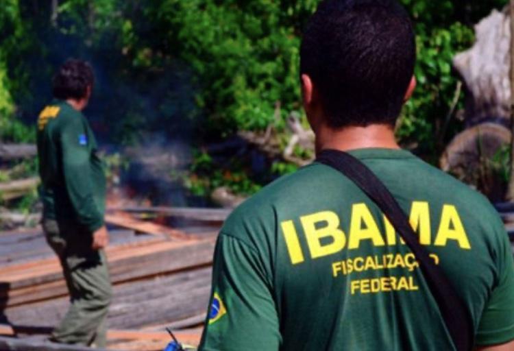 Ibama pode contratar 1,4 mil trabalhadores temporários