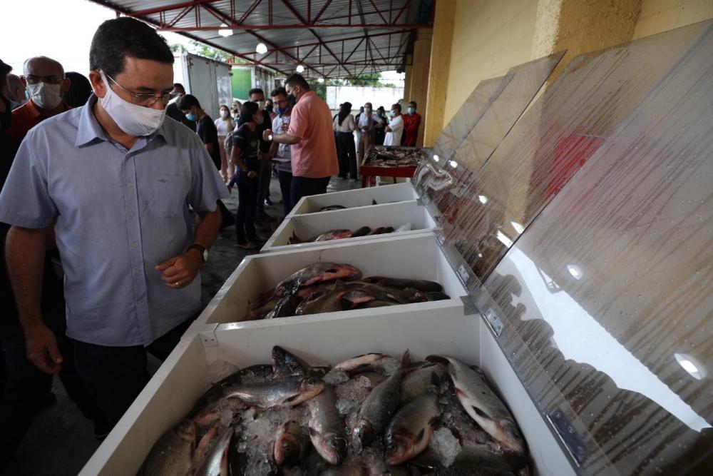 Governo do Amazonas inicia distribuição de pescado para pessoas em situação de vulnerabilidade social.
