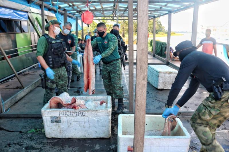 Batalhão Ambiental registra aumento de 800% nas apreensões de pescado ilegal em 2021