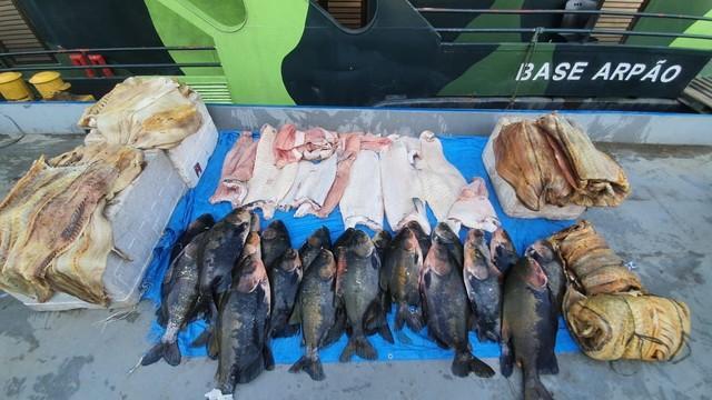 Mais de 700 quilos de pescado ilegal são apreendidos em embarcação, em Coari