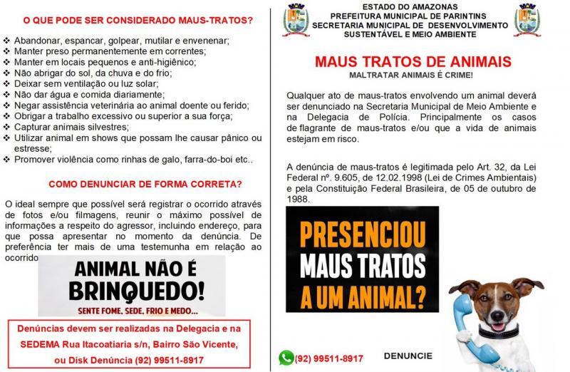 Em Parintins, campanha sensibiliza população para proteção de animais domésticos contra maus tratos